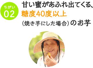 ② 甘い蜜があふれ出てくる、糖度40度以上(焼き芋にした場合)のお芋